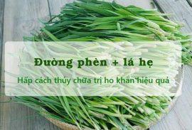 cong-dung-chua-benh-cay-he